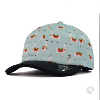 BONÉ DAD HAT COQUE PONY AZUL ST